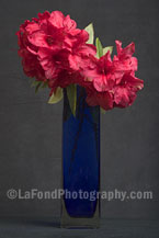 Red Rhodies Blue Vase